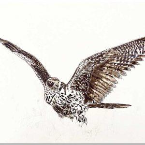 Illustratie giervalk op gerecycled papier