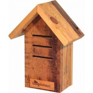 huis voor lieveheersbeestjes